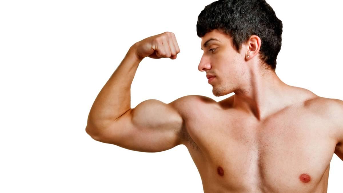 tipos de proteinas para fisicoculturistas