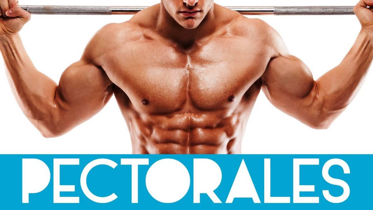 como perder grasa pectoral rapidamente
