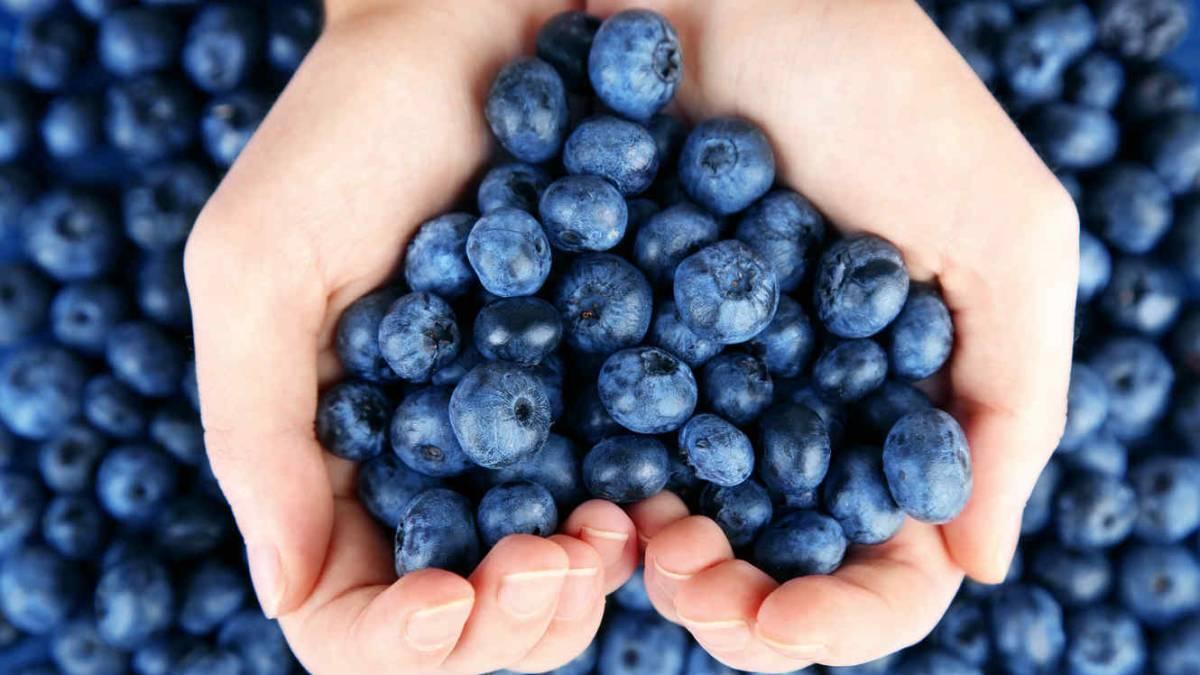 Dieta para prevenir ansiedade