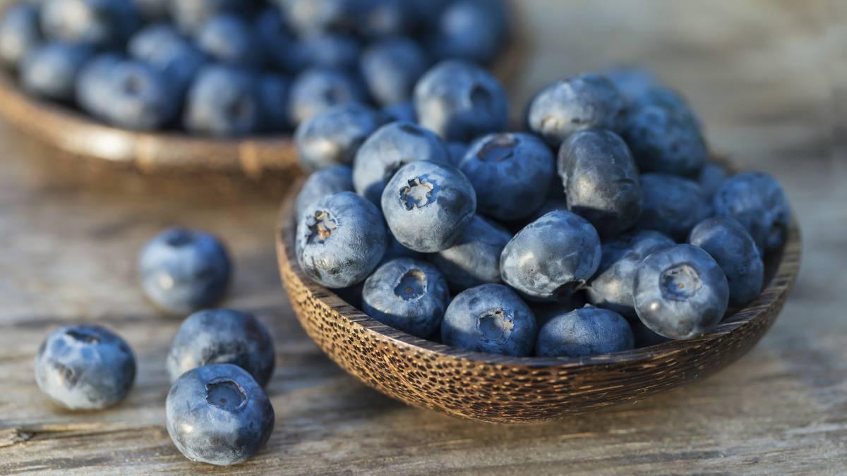 NUTRICIÓN: 4 beneficios de los arándanos azules para tu salud - AS.com