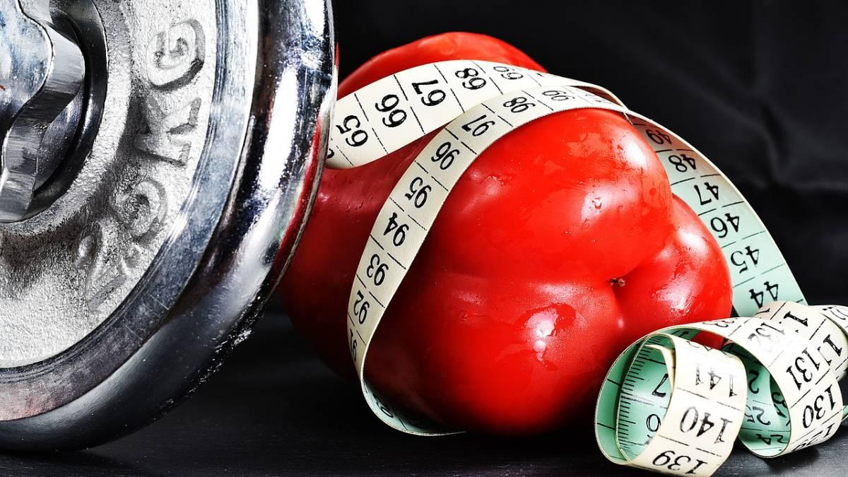 receita de dieta para perder 5 quilos em uma semana