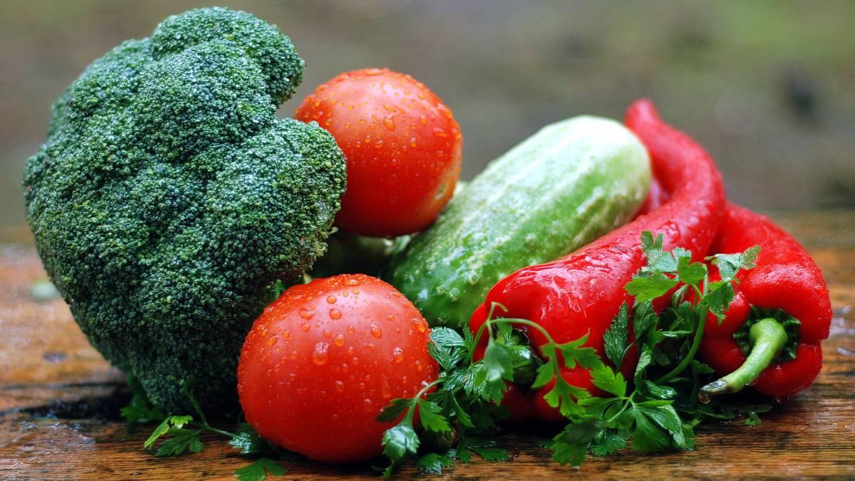 Dieta a base de hidratos de carbono y proteinas