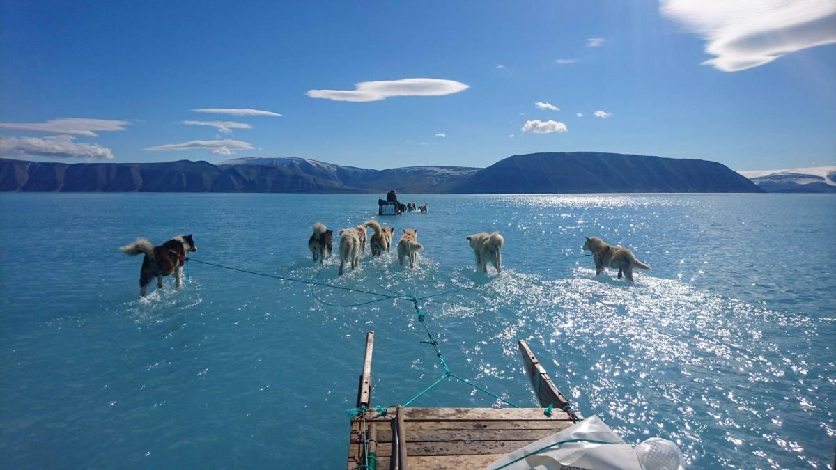 Resultado de imagen para medioambiente cambio climatico