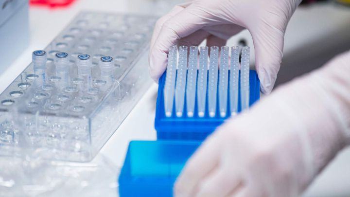 Reino Unido descubre otra variante del coronavirus - AS.com