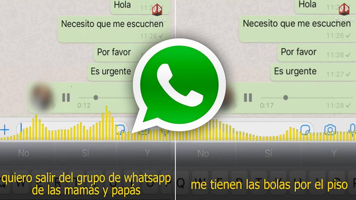 El loco audio de un padre para salir del grupo de WhatsApp del colegio de  los hijos