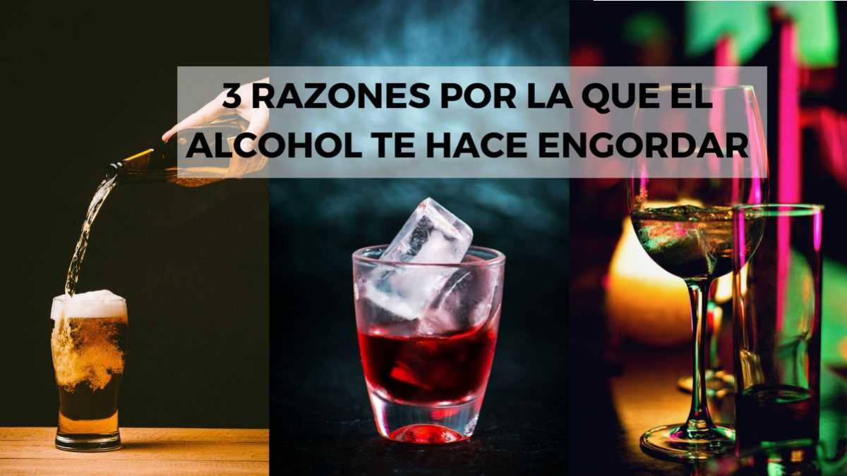 Quieres Saber Si El Alcohol Engorda Descubre Lo Que Tienes